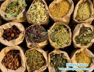 Can Micro-Chinese Medicine Osmotherapy Correct Creatinine 2.9 and Uric Acid 8.1-Kidney Failure | Kidney Disease and Diabetes Health | Scoop.it