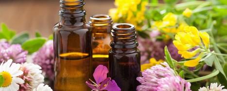 Pure, Organic Essential Oils India | Scoop it