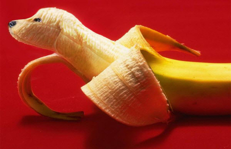 Can Your Dogs Eat Bananas Know It Now Puppi
