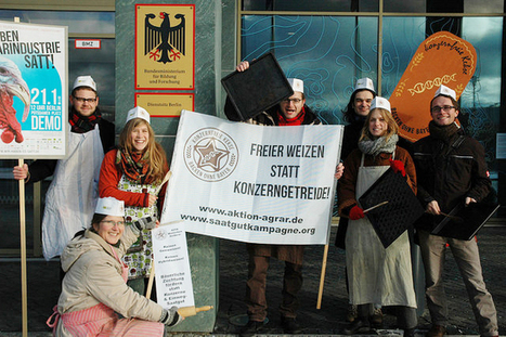 Protest am Forschungsministerium gegen Hybridweizen und Gentechniksaatgut | Agrarforschung | Scoop.it