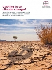 Cashing in on climate change?   eurodad   Small Business Development   Scoop.it