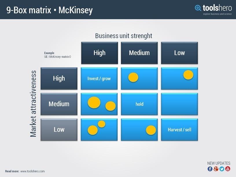 examples of ge matrix
