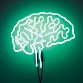 Inside the Brain of a Leader | Insights: OD - Leadership - Innovation & Learning | Scoop.it