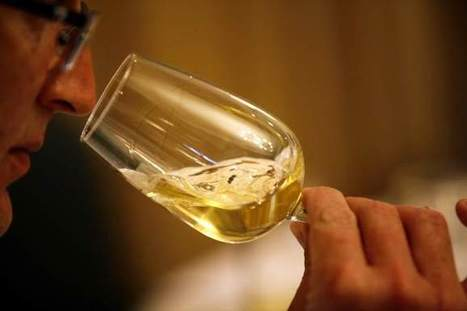 Berger: How context affects wine judging | Quirky wine & spirit articles from VINGLISH | Scoop.it