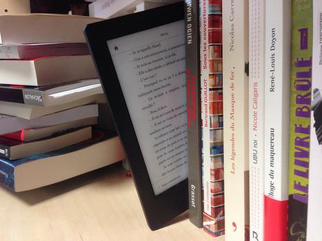 Bibliothèque : l'exception prêt numérique garantit les revenus des auteurs (CJUE)   Lecture, ressources et services numériques en bibliothèque   Scoop.it