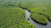 Province buys Bowater lands | Timberland Investment | Scoop.it