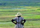 Prospective Agrimonde-Terra : quelles terres pour la sécurité alimentaire mondiale en 2050 ? | Les techniques, l'innovation, la recherche, l'économie et la commercialisation en agriculture | Scoop.it