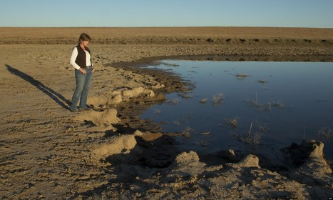 U.S. Drought Expands In Kansas, Oklahoma And Texas | The Barley Mow | Scoop.it