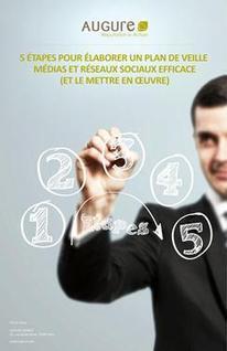 5 étapes pour élaborer un plan de veille médias et réseaux sociaux efficace | Social media - E-reputation | Scoop.it