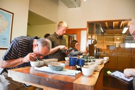 Sustainable Harvest Presents Initial Findings of Fermentation Research Project at Origin | Coffee News | Scoop.it