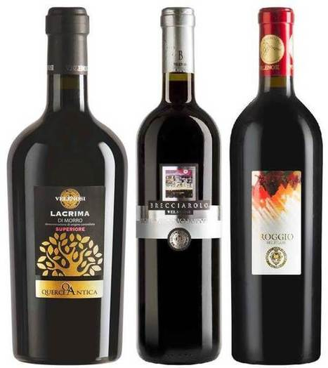 Velenosi creates interest on Wines of Le Marche | Wines and People | Scoop.it