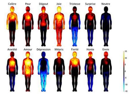 UP Magazine - Émoi, stress et moi: Prendre conscience du pouvoir des émotions | Communiqu'Ethique sur la santé et celle de la planette | Scoop.it