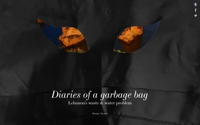 Diaries of a garbage bag