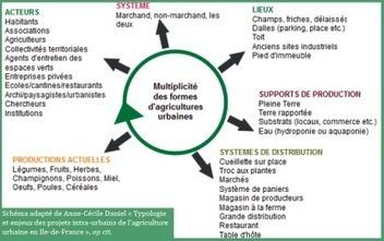 Les Notes de la FEP #10 - Agriculture urbaine   (Culture)s (Urbaine)s   Scoop.it