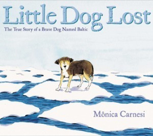 Little Dog Lost — The Horn Book | Picture Books and More | Scoop.it