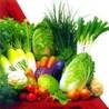 nutrientfoods.org