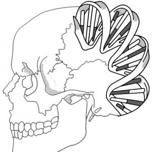Roman DNA Project | #SciFund | Scoop.it