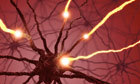 Memory and Retrieval: How your brain likes to be treated | Health Science Literacy for High School | Scoop.it