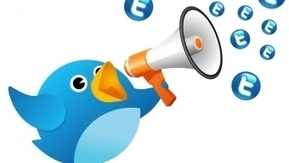 Twitter – 5 points clés pour identifier et impliquer ses ambassadeurs   le 2.0 à mon service   Scoop.it
