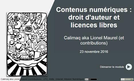Comprendre le droit de la propriété intellectuelle - Eduscol | Usages numériques et Histoire Géographie | Scoop.it