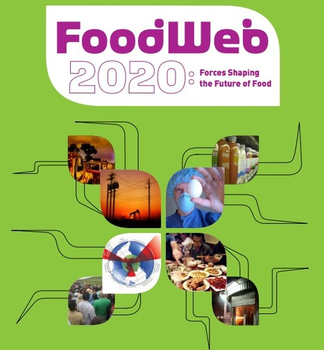 Food Web 2020 | eetbaar amsterdam | Scoop.it
