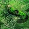 Produire autrement, environnement et développement durable