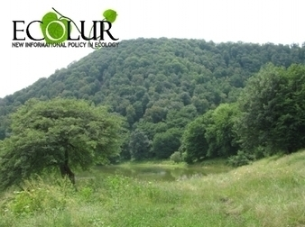 Armenian Government Allotted Funds for Forestation of Yerevan Green Zone   Saving the Wild: Nature Conservation in the Caucasus   Scoop.it