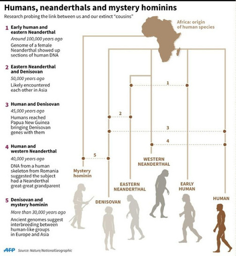 The caves that prove Neanderthals were cannibals | Geology | Scoop.it