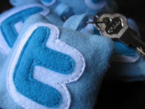 5 Tips om een Persoonlijk Leer Netwerk (PLN) op te zetten bij Twitter | Serial Twitter | Scoop.it