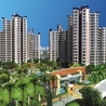 Wave Vasilia Noida - Wave City Center
