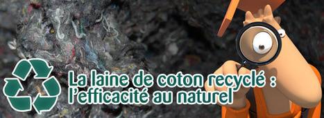 La laine de coton : l'efficacité au naturel [MAJ]   Immobilier   Scoop.it