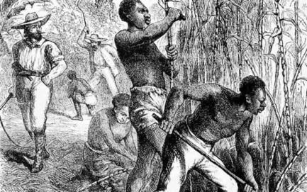 How Slaves Built American Capitalism | Unthinking respect for authority is the greatest enemy of truth. | Scoop.it