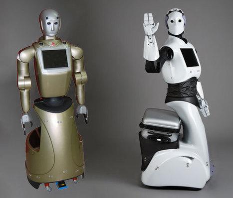 Avatar, humanoïde... à quoi ressembleront les robots dédiés au tourisme ?   Une nouvelle civilisation de Robots   Scoop.it