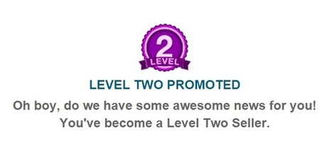 My Journey To Reaching Fiverr's Level 2 Seller And 7 Tips To Reach It Faster | Internet Marketing Z6 | Scoop.it