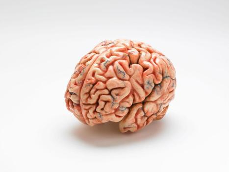 Human brain 'has set of nerve cells that respond only to sound of music'   Espacios Multiactorales   Scoop.it