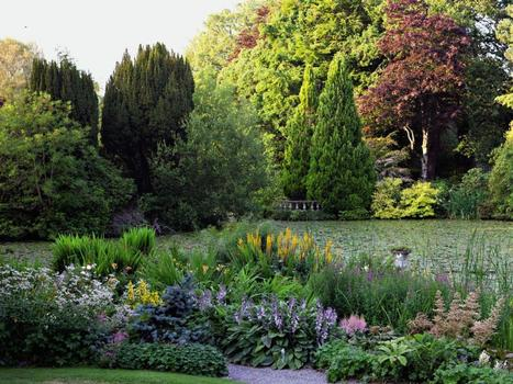 Anna Pavord explores the lush gardens of Ireland | Gardening is more than Digging the Dirt | Scoop.it