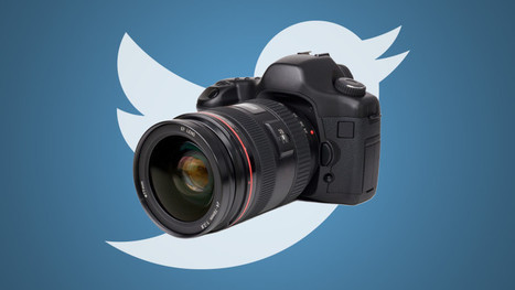 Twitter Is Now Displaying Fuller Versions Of Photos In Your Web Feed | Best Twitter Tips | Scoop.it