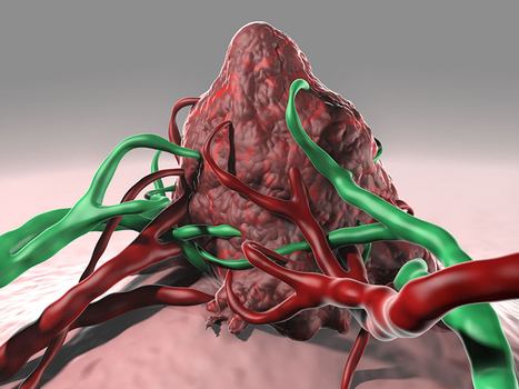 New Cancer Vaccine Approach Directly Targets Dendritic Cells | Melanoma Dispatch | Scoop.it