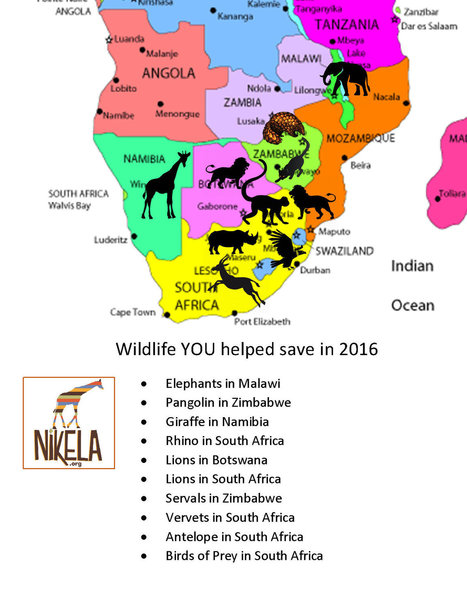 How your donations helped save African wildlife in 2016 | Wildlife Conservation: People and Stories | Scoop.it