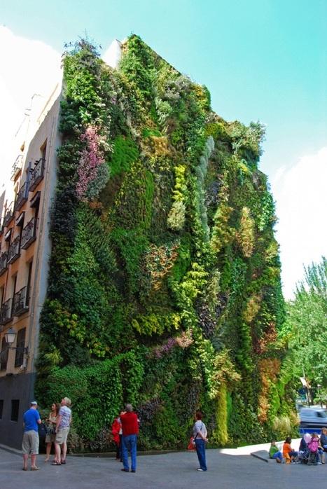 Vertical Garden – By Patrick Blanc in Madrid, Spain | Le sens de votre vie | Scoop.it