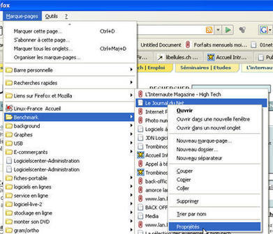 Collecte de données : des mots-clés pour vos sites favoris sur Firefox | François MAGNAN  Formateur Consultant | Scoop.it