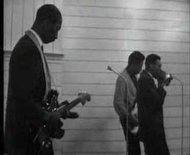 Hound Dog Taylor Wild About You Baby | The Blues | Scoop.it