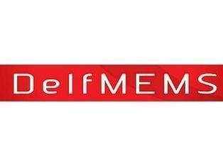 DelfMEMS strengthens resources - CIOL   RF MEMS Mag   Scoop.it
