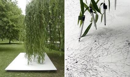 Tree Drawings by Tim Knowles | Hitchhiker | Scoop.it