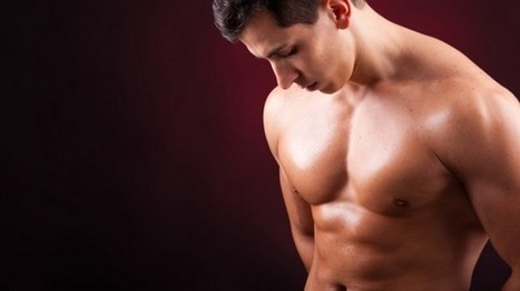 Image result for pria sixpack