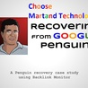 Google Penalty Recovery services offering website ranking solutions