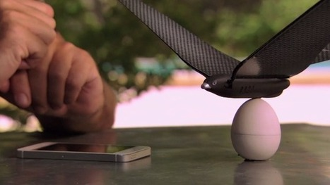 Bionic Bird Is An App-Controlled Drone That Flies Like A Flappy Bird | TechCrunch | Rise of the Drones | Scoop.it