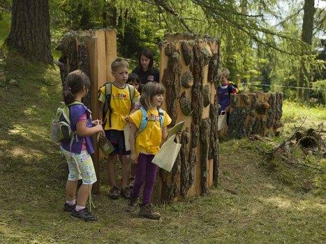 La Foresta dei Draghi di Latemar   Travelling with kids   Scoop.it