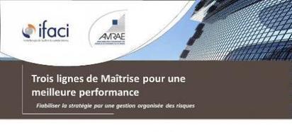 AMRAE IFACI | Prise de Position | AMRAE | Stratégie | Scoop.it