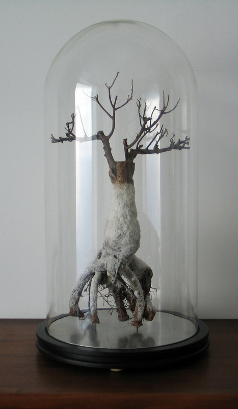 "Anthony Duchêne: ""The chicken in salt crust"" | Art Installations, Sculpture, Contemporary Art | Scoop.it"